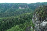 Saxonswitzerland-hiking-germany-forest