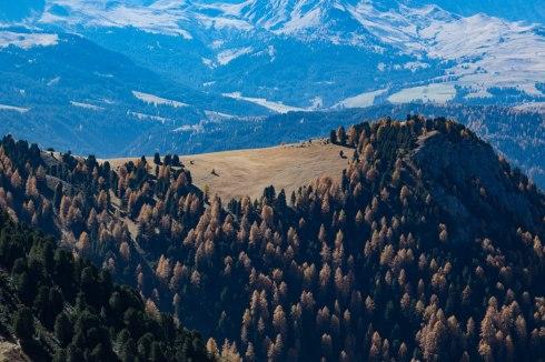 mountains-tyrol-dolomites-hiking-autumn-alpine-meadow